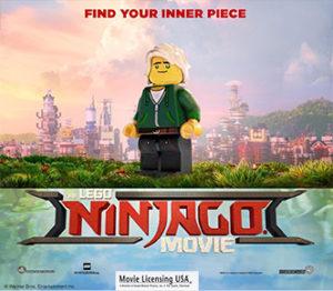 Family Movie: THE LEGO NINJAGO MOVIE @ North Truro | Massachusetts | United States