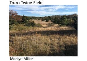 The Biodiversity of Truro's Upland Twine Field Meadow @ Truro Public Library | Dennis | Massachusetts | United States