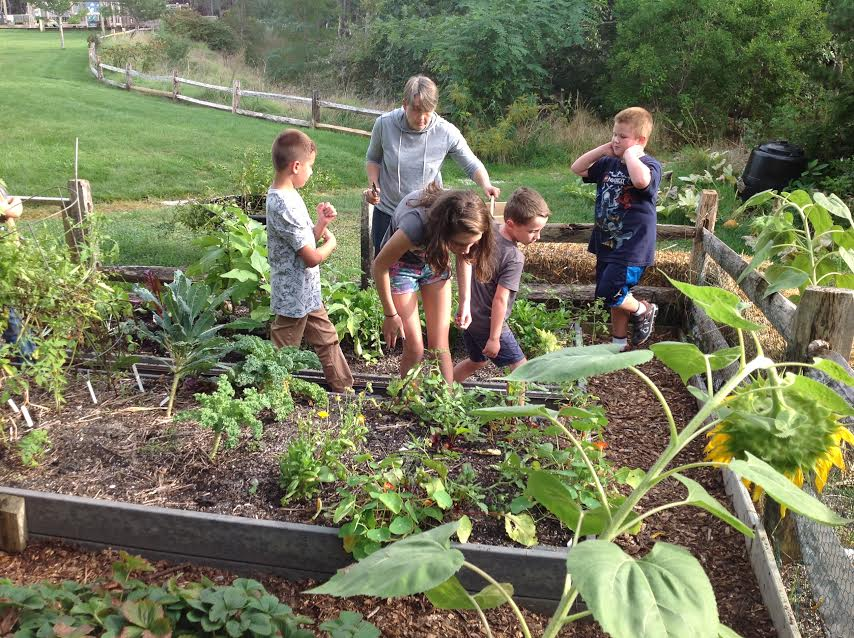 Cape Cod Community College Library Part - 19: Where: Back Deck Of The Truro Public Library Description: Maggie Began The  Childrenu0027s Garden In 2010 With Executive Director Of Sustainable Cape, ...