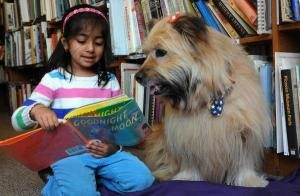 Tales to Tails with CAP @ Truro Public Library | North Truro | Massachusetts | United States
