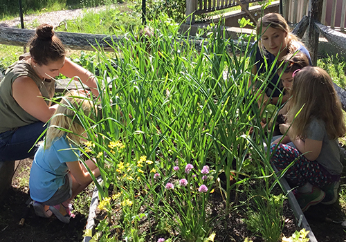 Image of a group working on a garden